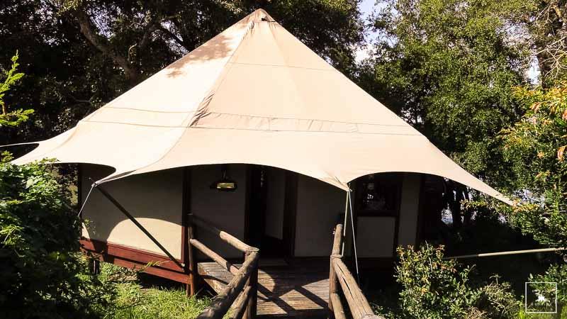 Kruger Stories-Camp Hamiltons 003